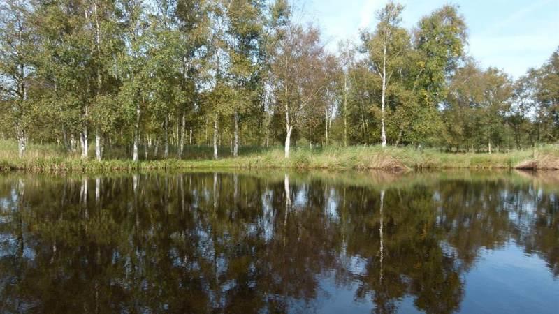 Varen door het broekbos in Ilperveld