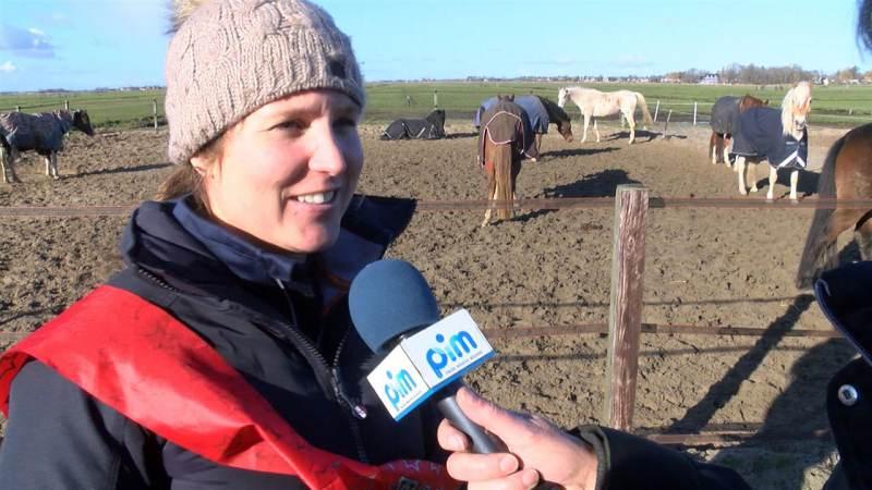 Paardenvirus heerst niet meer bij Stal Dobber in Zuiderwoude
