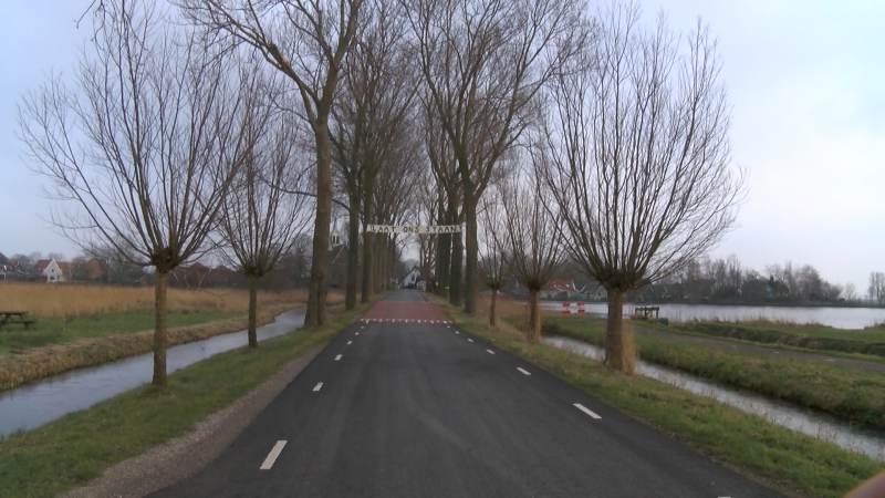 Kap van populieren aan Burgemeester Peereboomweg uitgesteld