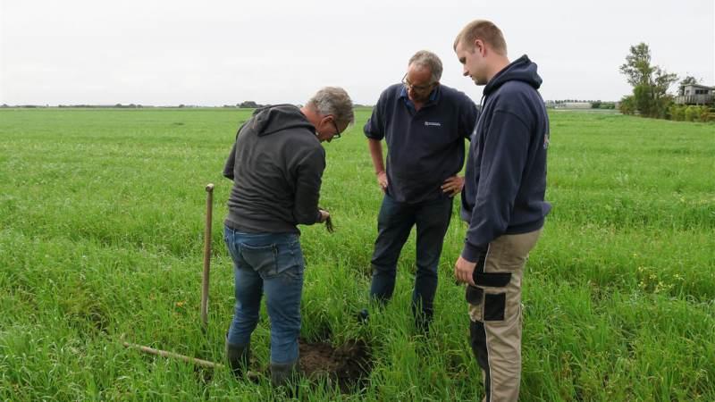 Subsidiebudget voor Noord-Hollandse boeren aangevuld