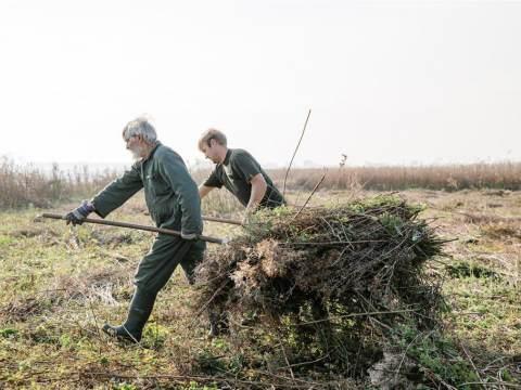 Help 70 natuurrijke plekken in Noord-Holland tijdens Landelijke Natuurwerkdag
