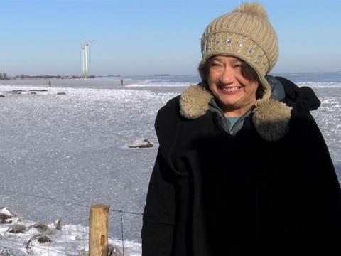 CWW wil nieuwe windturbines bij De Nes